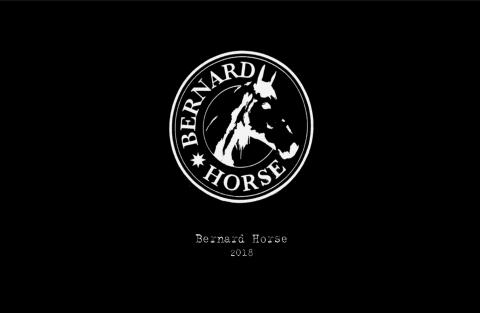 Bernard Horse
